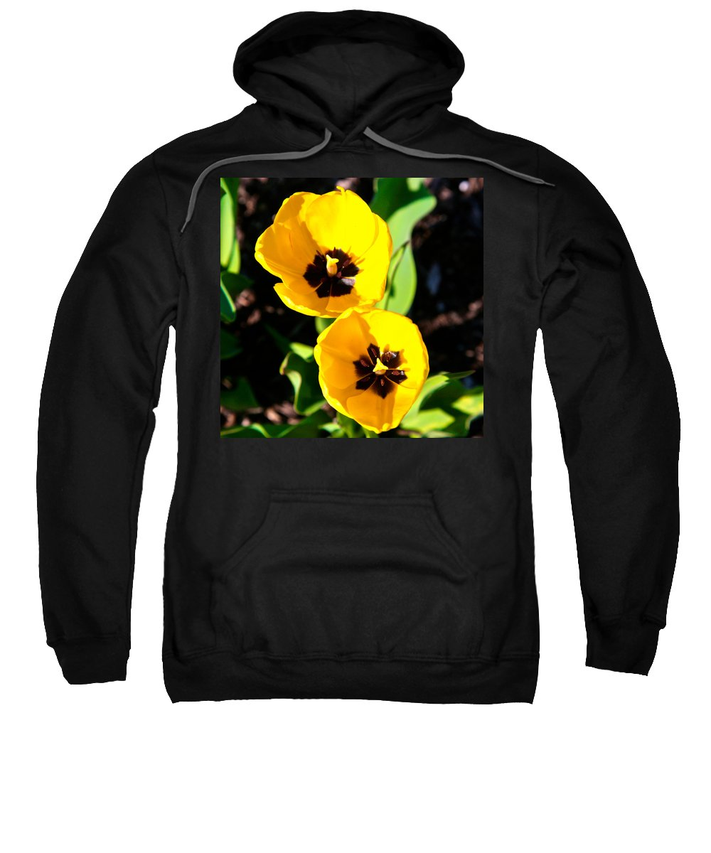 Related Tags: Flowers Artwork Sweatshirt featuring the photograph Two Tulips 2 by Robert Pearson