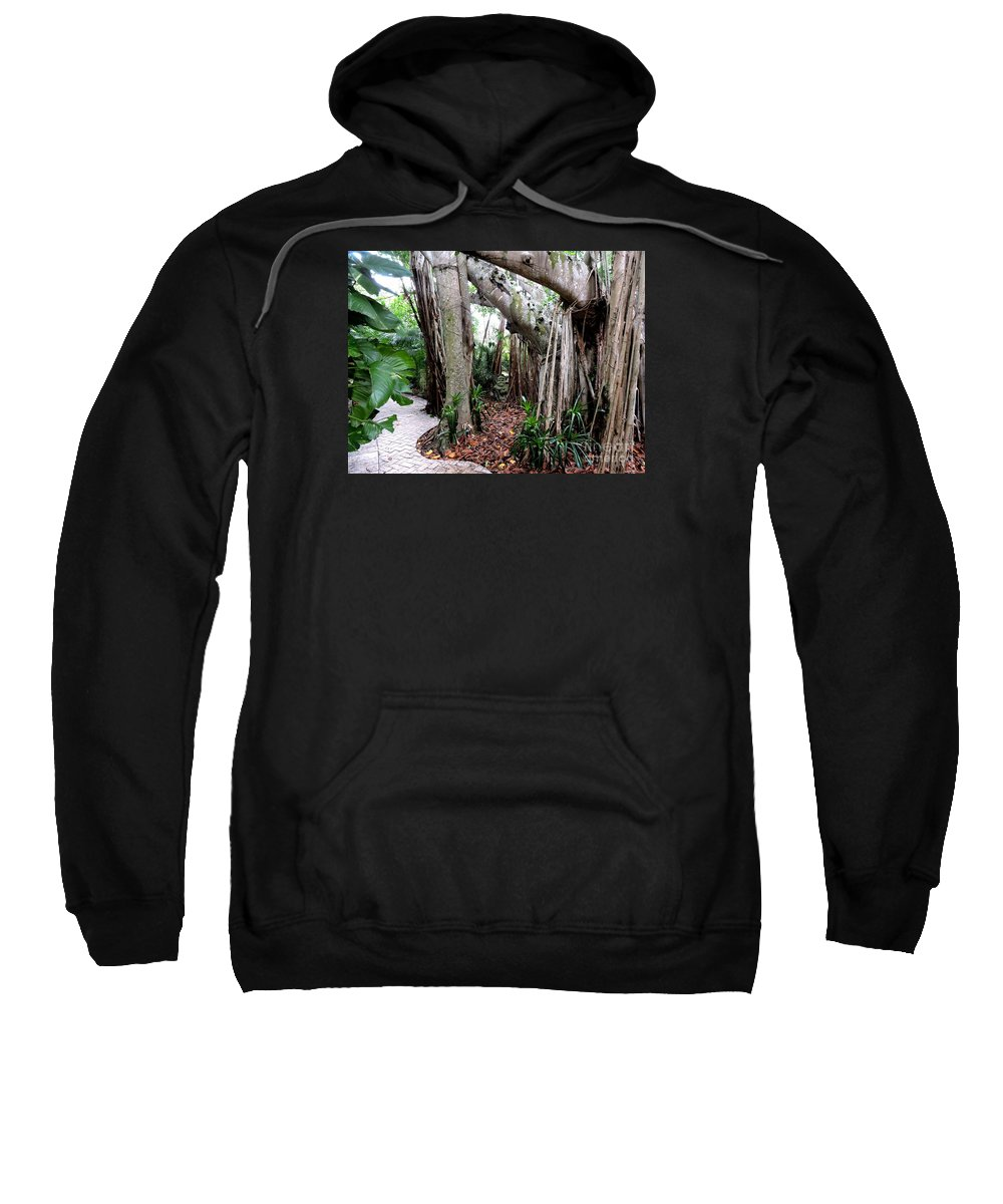 Tree Sweatshirt featuring the photograph Under The Banyan Tree by Beth Williams