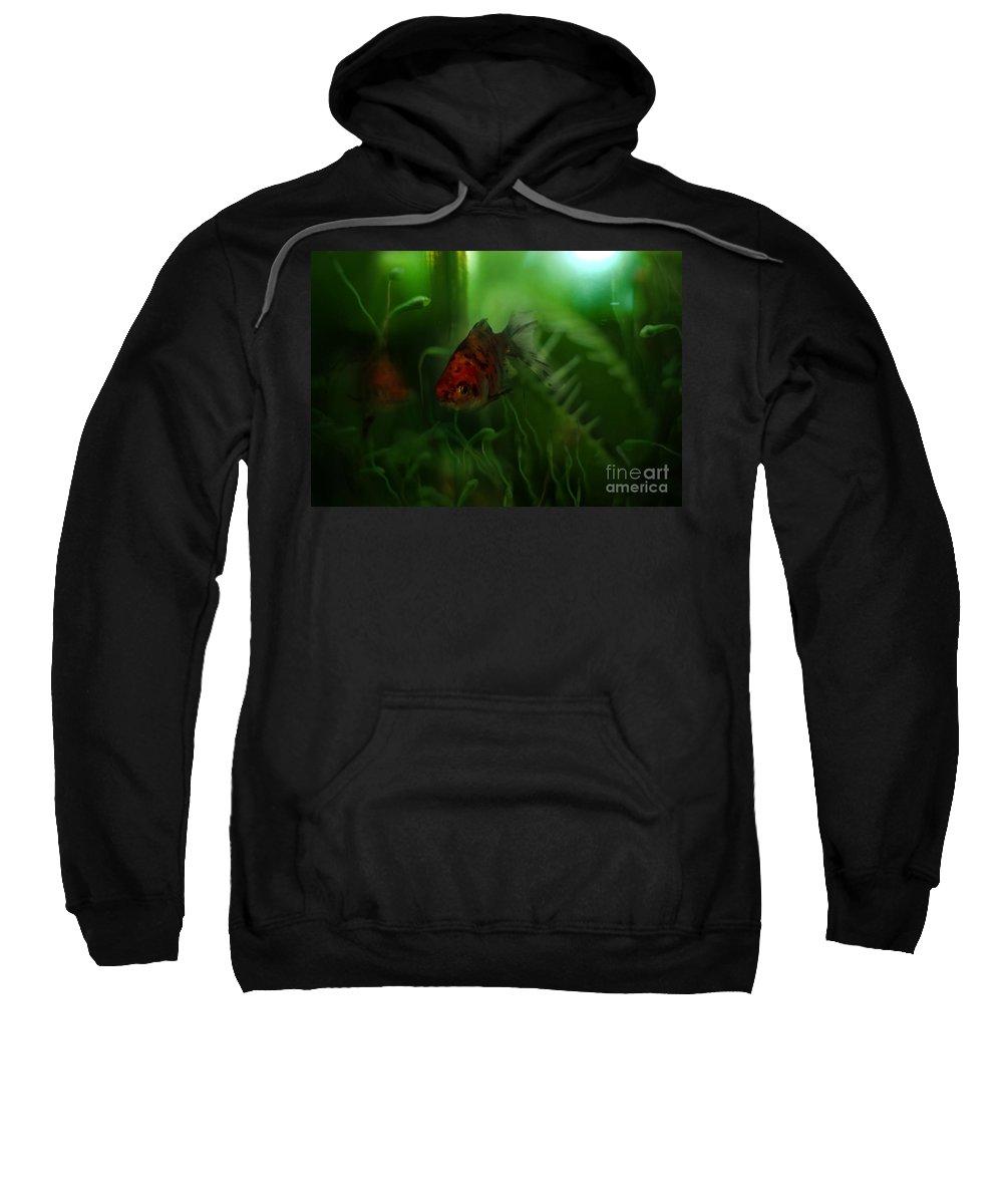 Goldfish Sweatshirt featuring the photograph Underwater World by Angel Ciesniarska