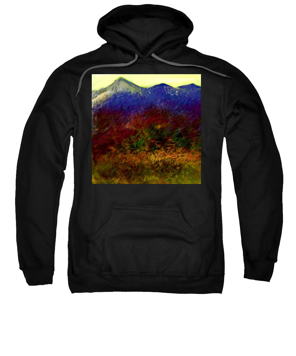 Digital Painting Sweatshirt featuring the digital art Untitled 4-11-10 by David Lane