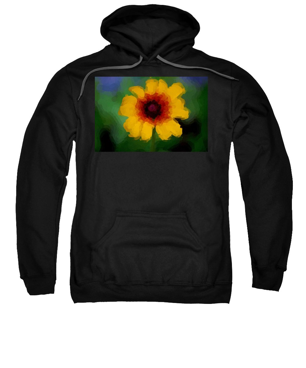 Digital Photograph Sweatshirt featuring the photograph Untitled 9-15-09 by David Lane