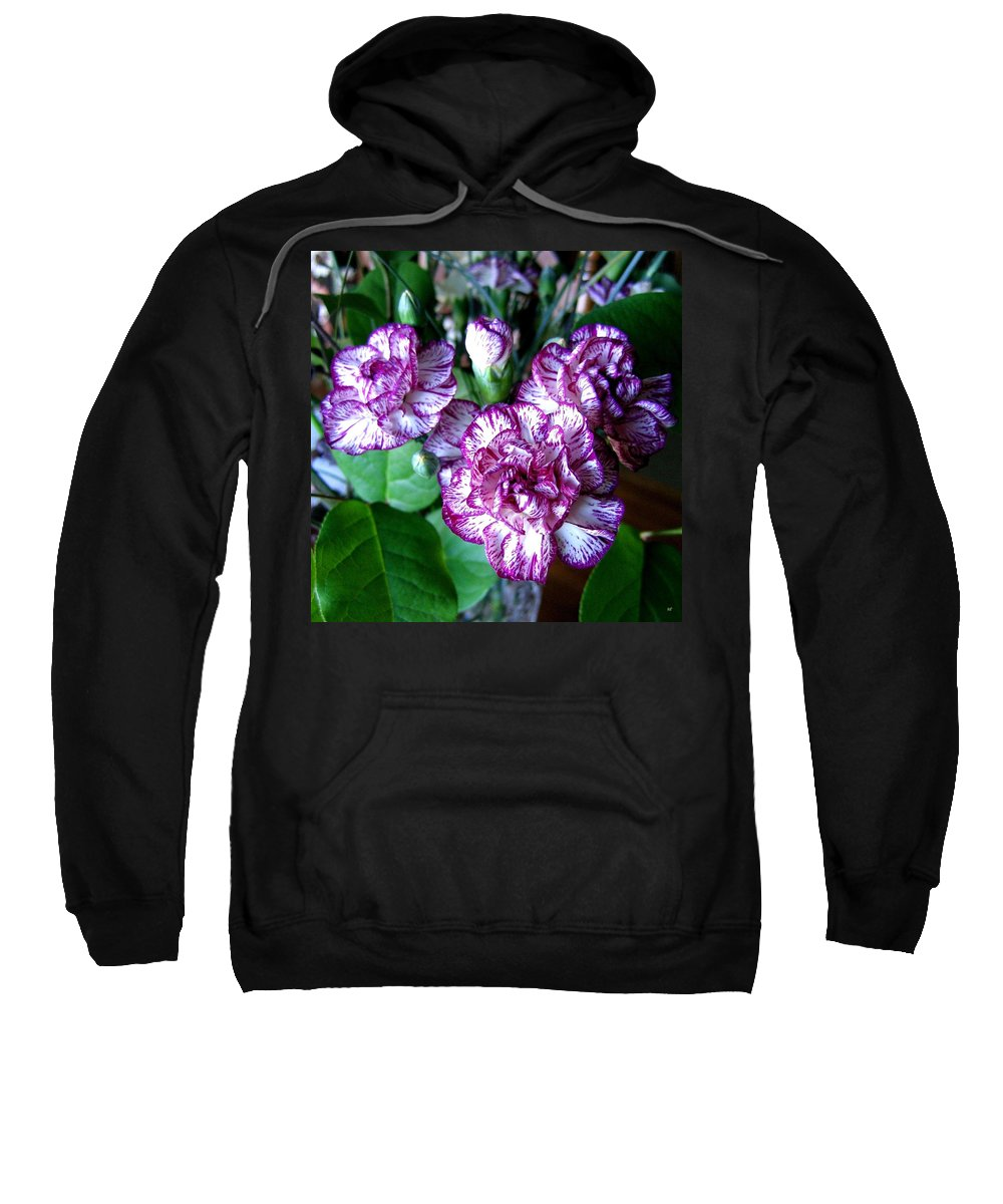 Carnations Sweatshirt featuring the photograph Variegated Carnations by Will Borden