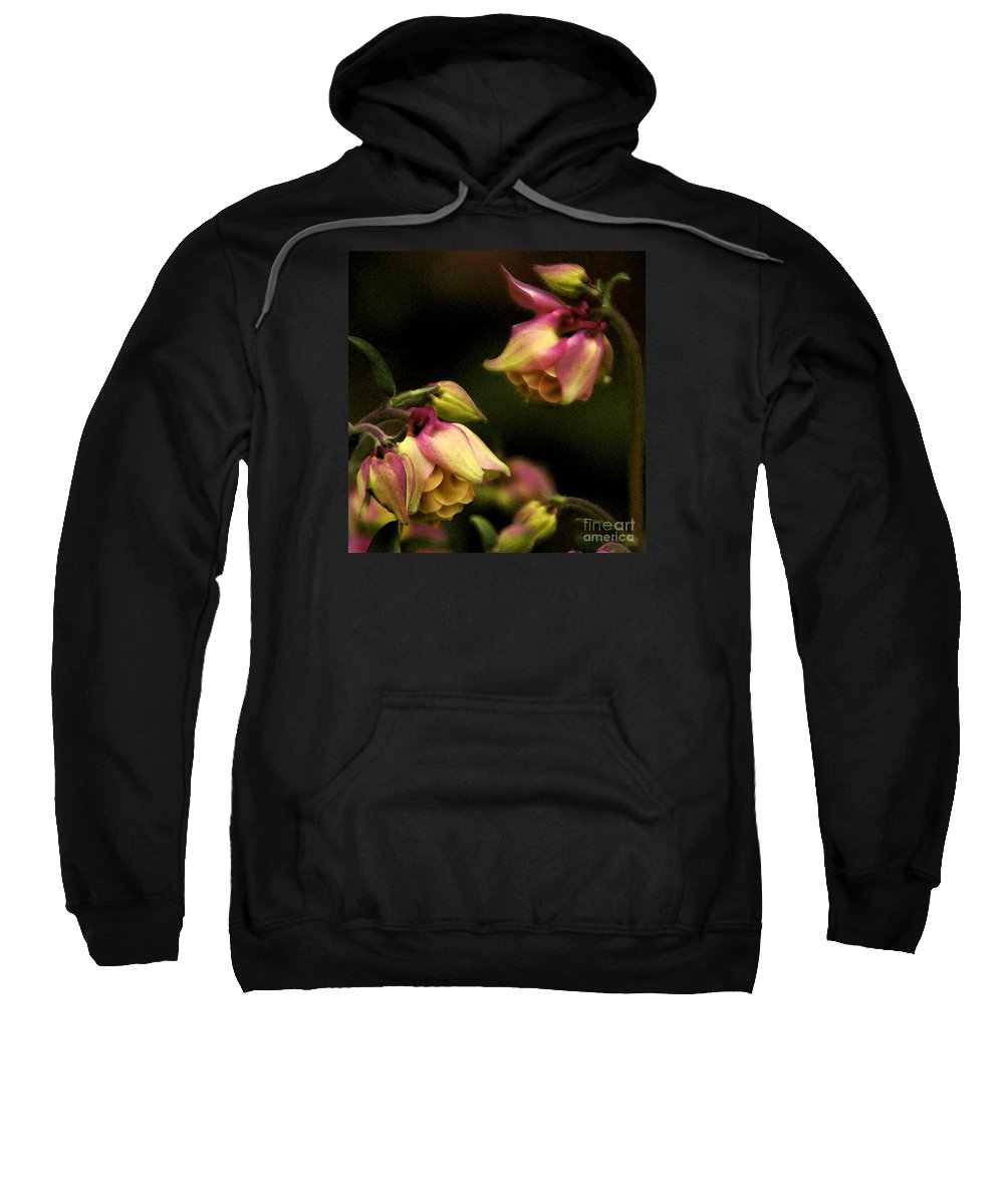 Flower Sweatshirt featuring the photograph Victorian Romance by Linda Shafer