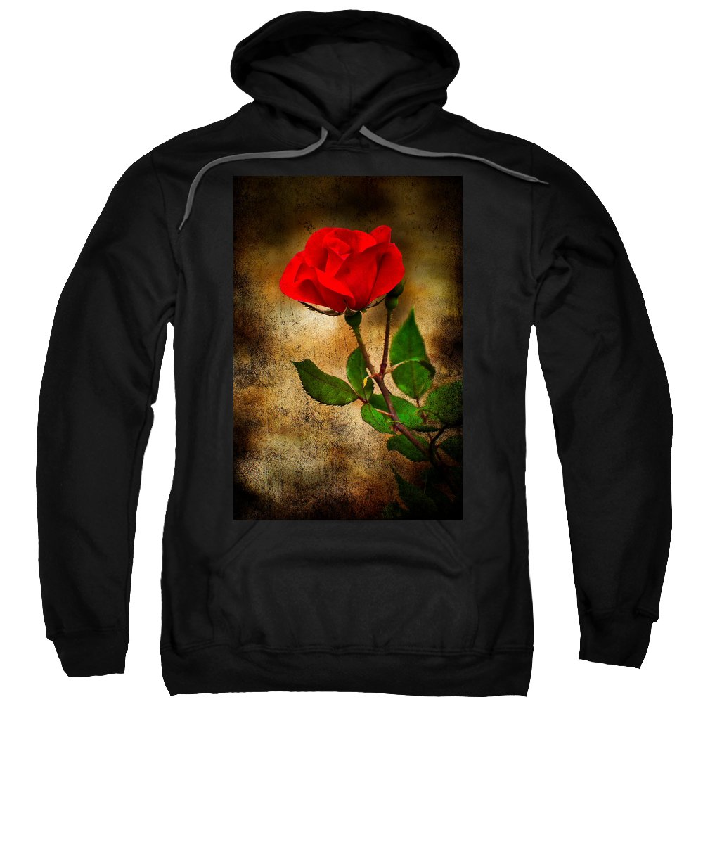 Rose Sweatshirt featuring the photograph Vintage Rose by Rich Leighton