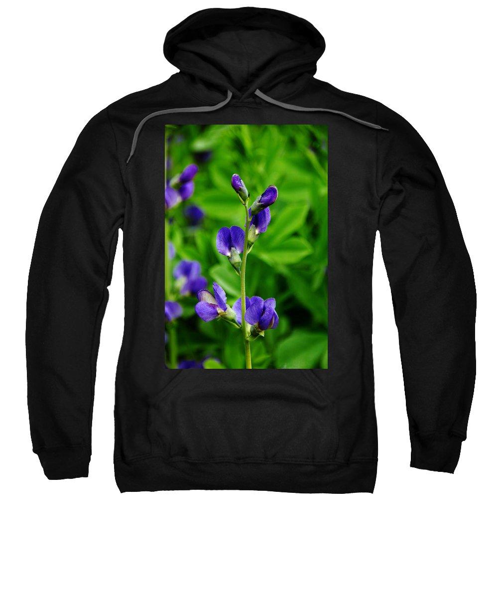 Indigo Sweatshirt featuring the photograph Violet Blue by Debbie Oppermann