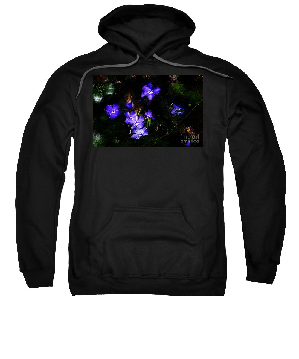 Spring Sweatshirt featuring the photograph Violet by David Lane