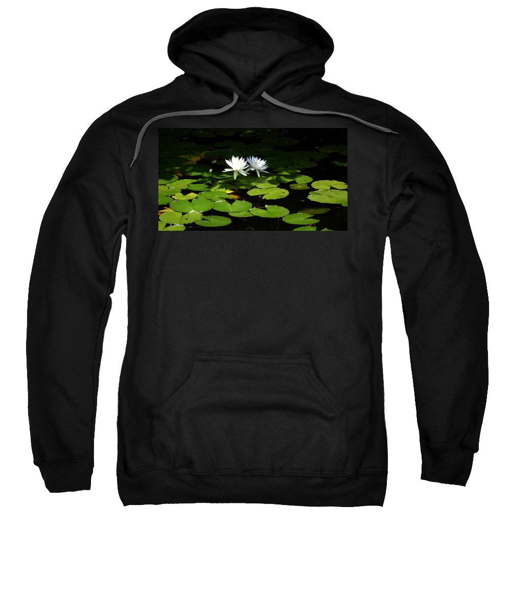 Water Sweatshirt featuring the photograph Wading Fairies by Shelley Jones
