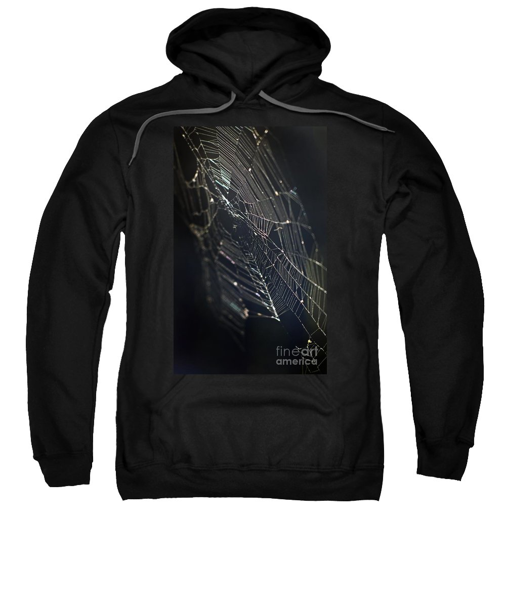 Spider Webs Sweatshirt featuring the photograph Waiting... by Norman Andrus