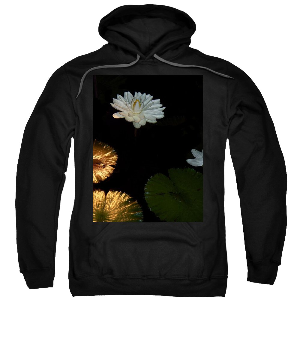 Water Lilies Sweatshirt featuring the painting Water Lilies And Pads by Eric Schiabor