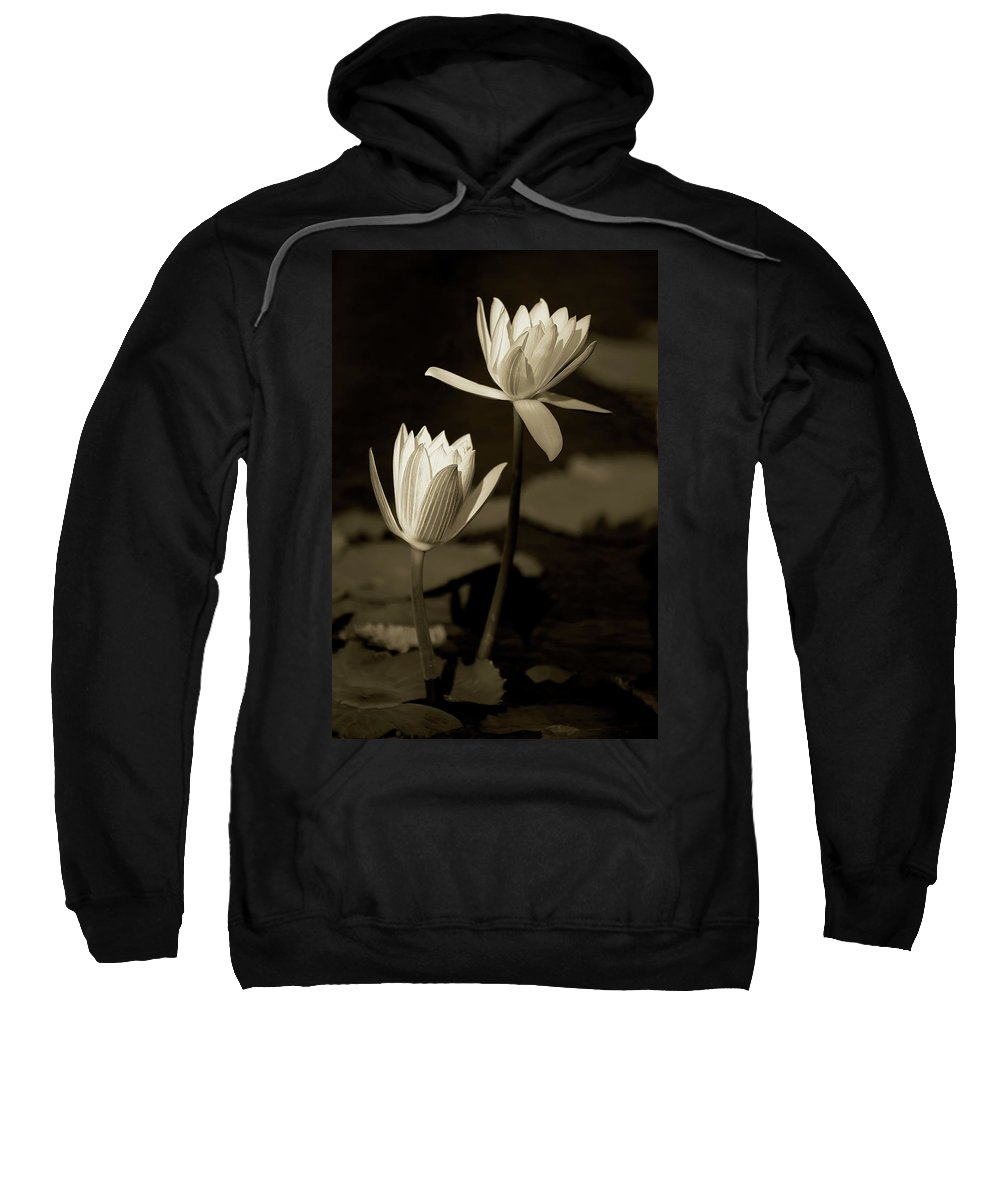 Naples Botanical Garden Sweatshirt featuring the photograph Water Lilies by Dennis Goodman