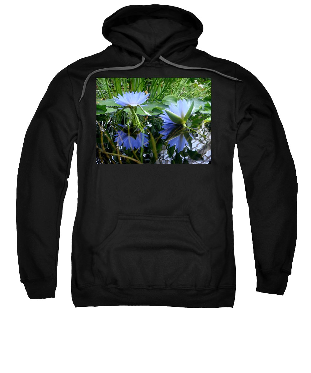 Water Lilly Sweatshirt featuring the photograph Water Lilies by Donna Blackhall