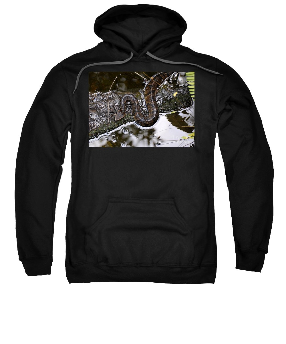 Water Moccasin Sweatshirt featuring the photograph Water Moccasin by David Lee Thompson