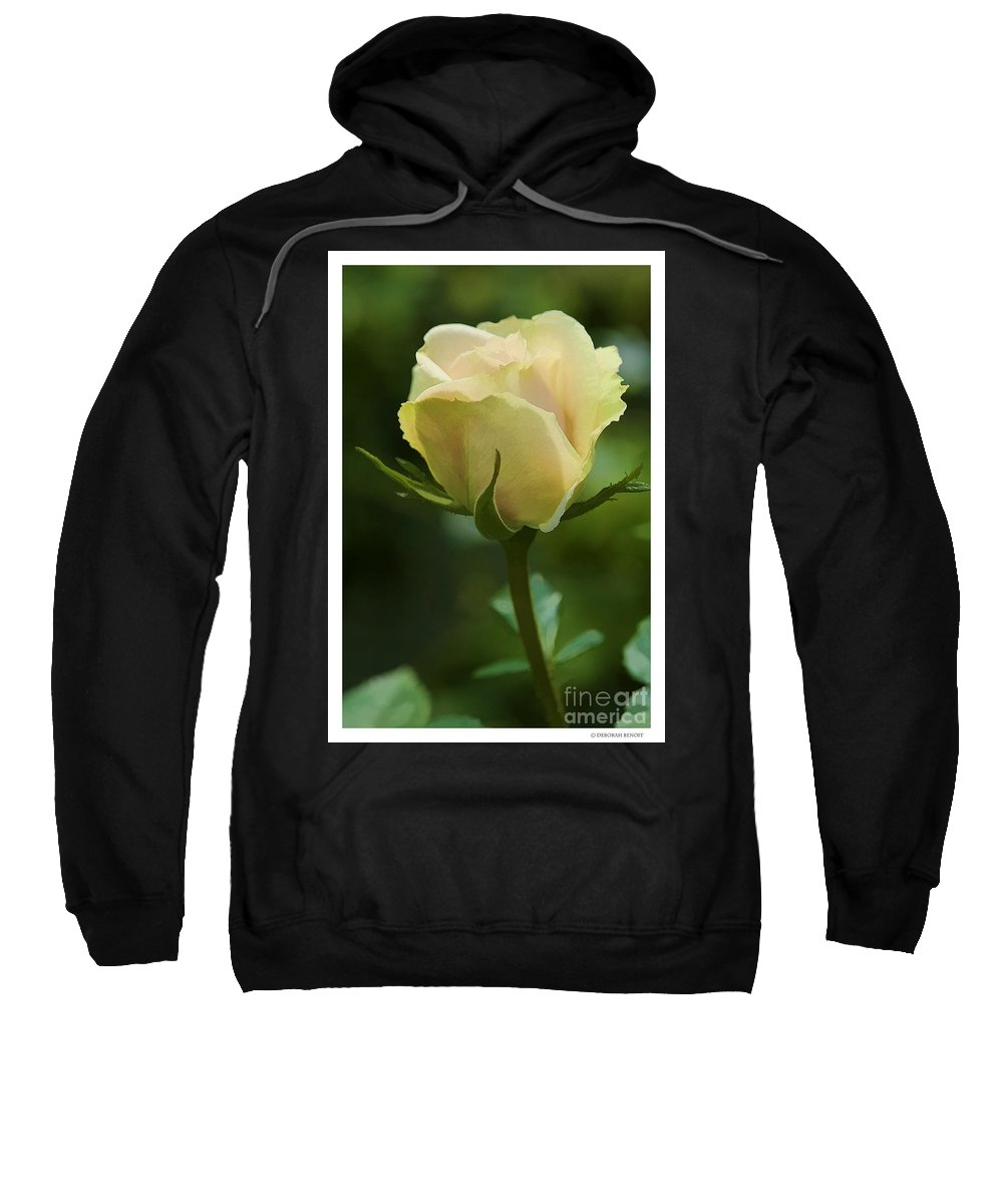 Rose Sweatshirt featuring the photograph Watercolor Rose by Deborah Benoit