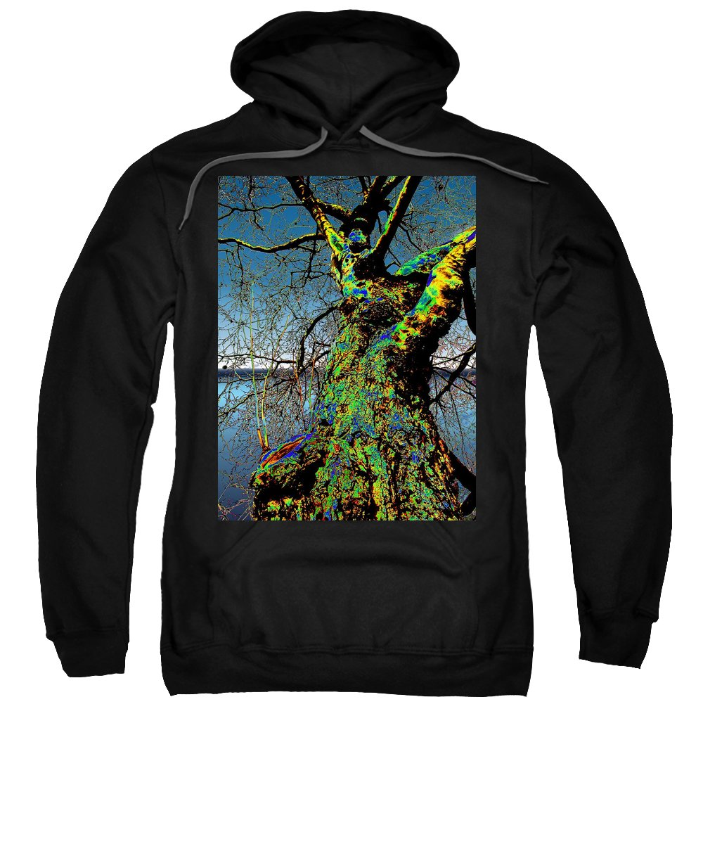 Tree Sweatshirt featuring the photograph Waters Edge by Tim Allen