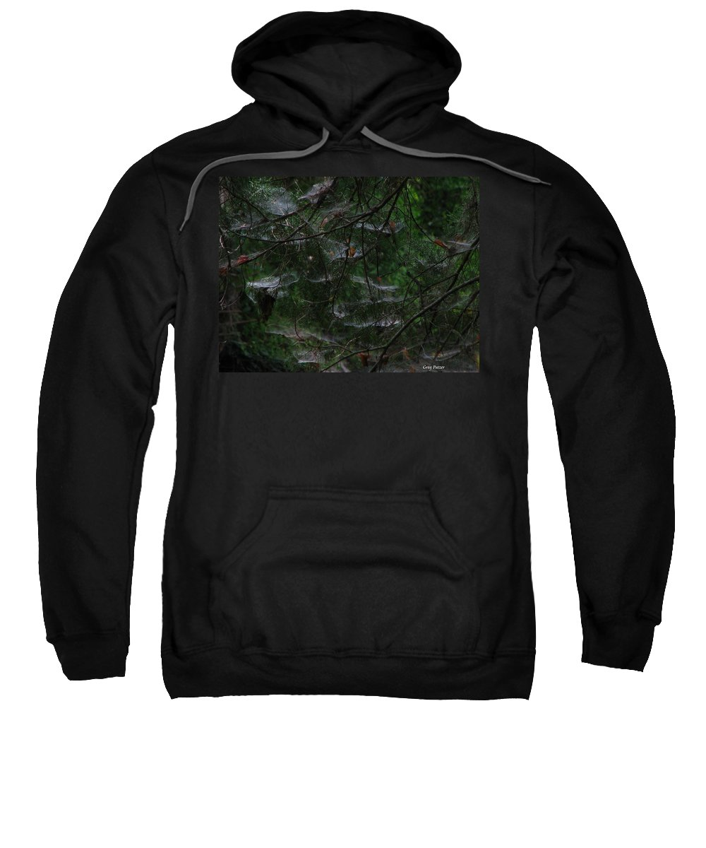 Patzer Sweatshirt featuring the photograph Webs Of A Tree by Greg Patzer