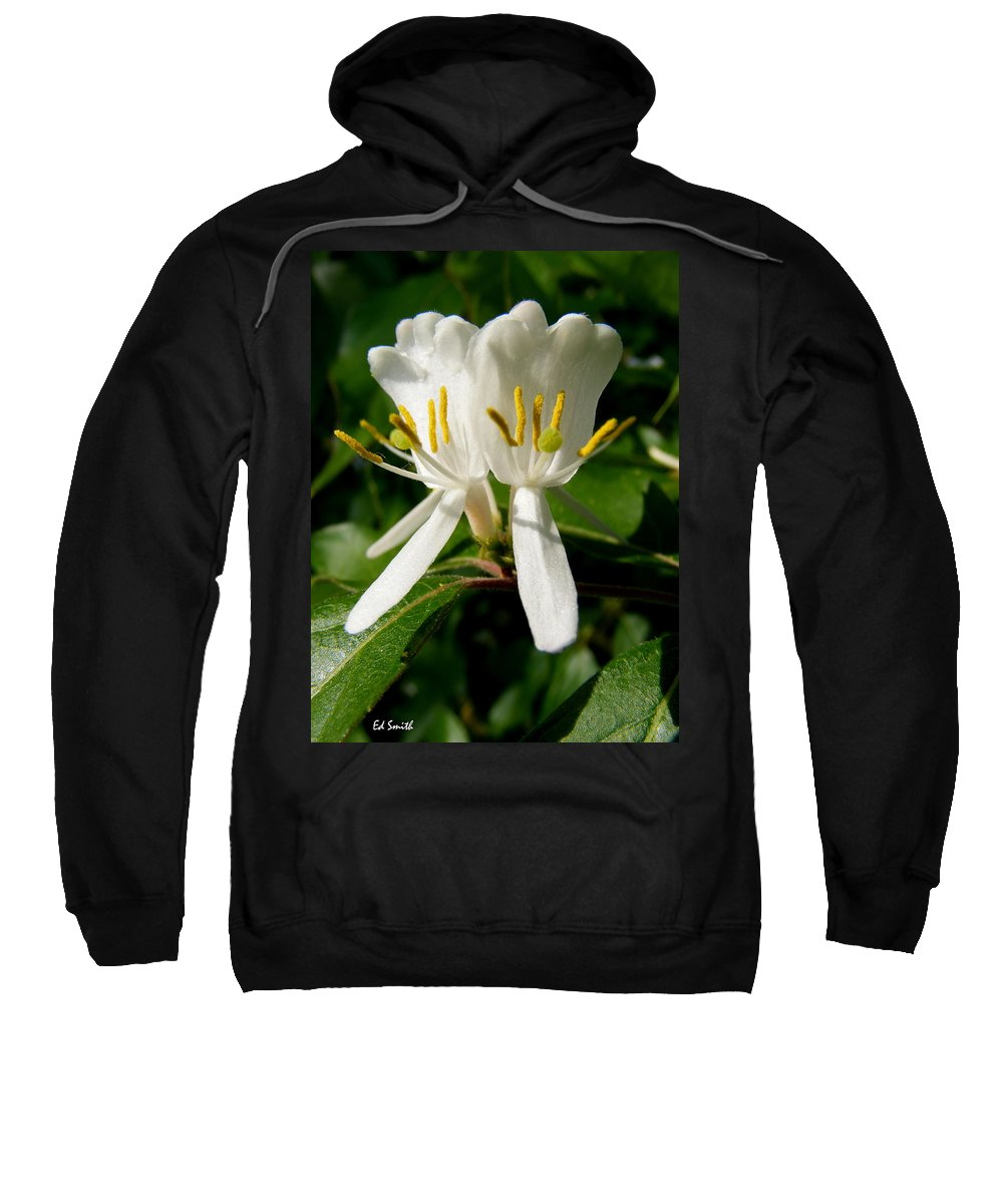 Welcome My Friends Sweatshirt featuring the photograph Welcome My Friends by Ed Smith