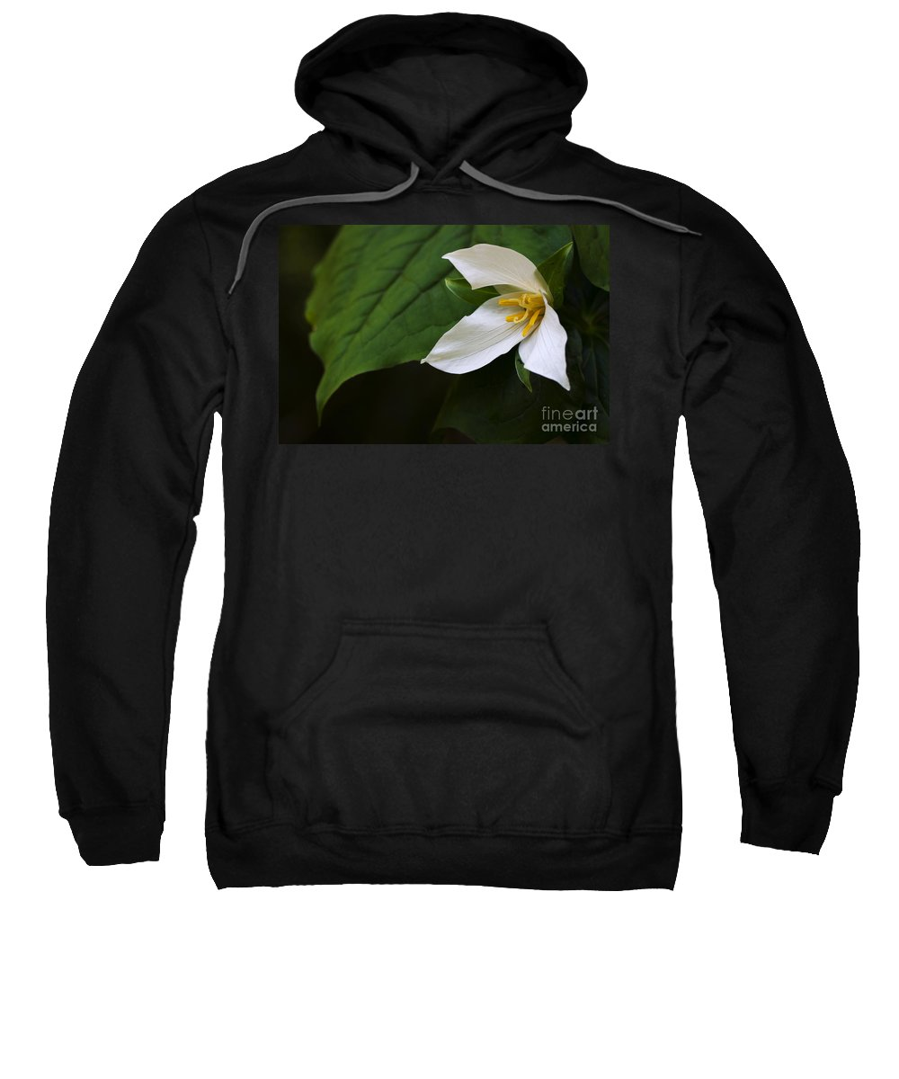 Trillium Ovatum Sweatshirt featuring the photograph Wildflowers Western Trillium Oregon 2 by Bob Christopher