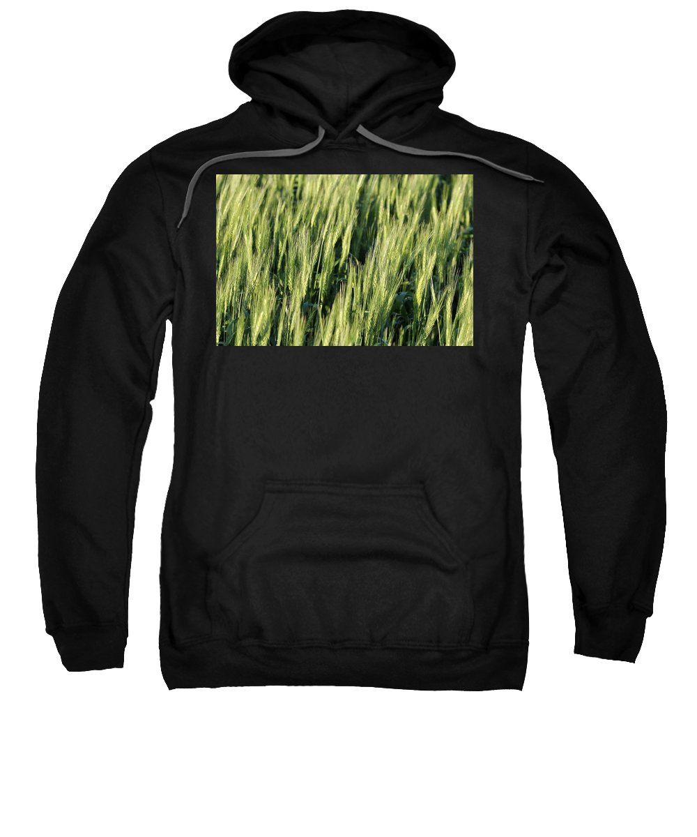 Agriculture Sweatshirt featuring the photograph Wheat by Peter Bouman