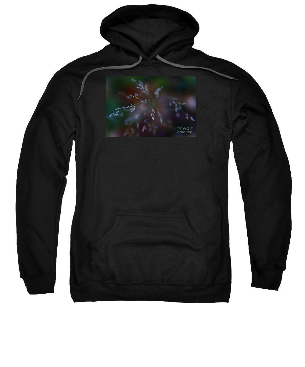 Grass Sweatshirt featuring the photograph Whispered Dreams by Linda Shafer