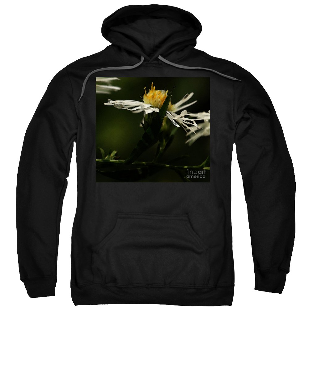 Aster Sweatshirt featuring the photograph White Aster by Linda Shafer