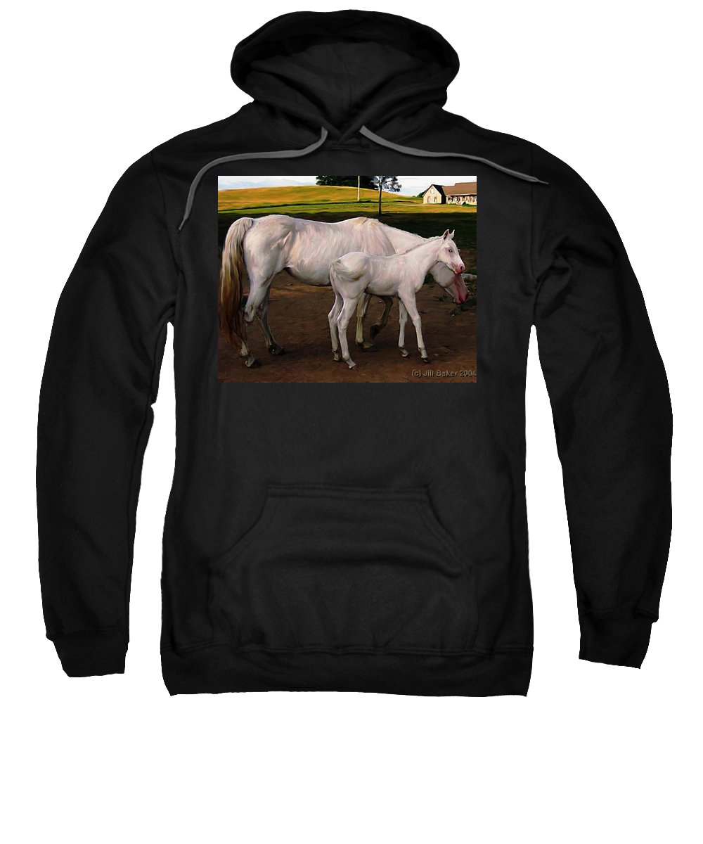 White Horses Sweatshirt featuring the painting White Baby Horse by Jill Baker