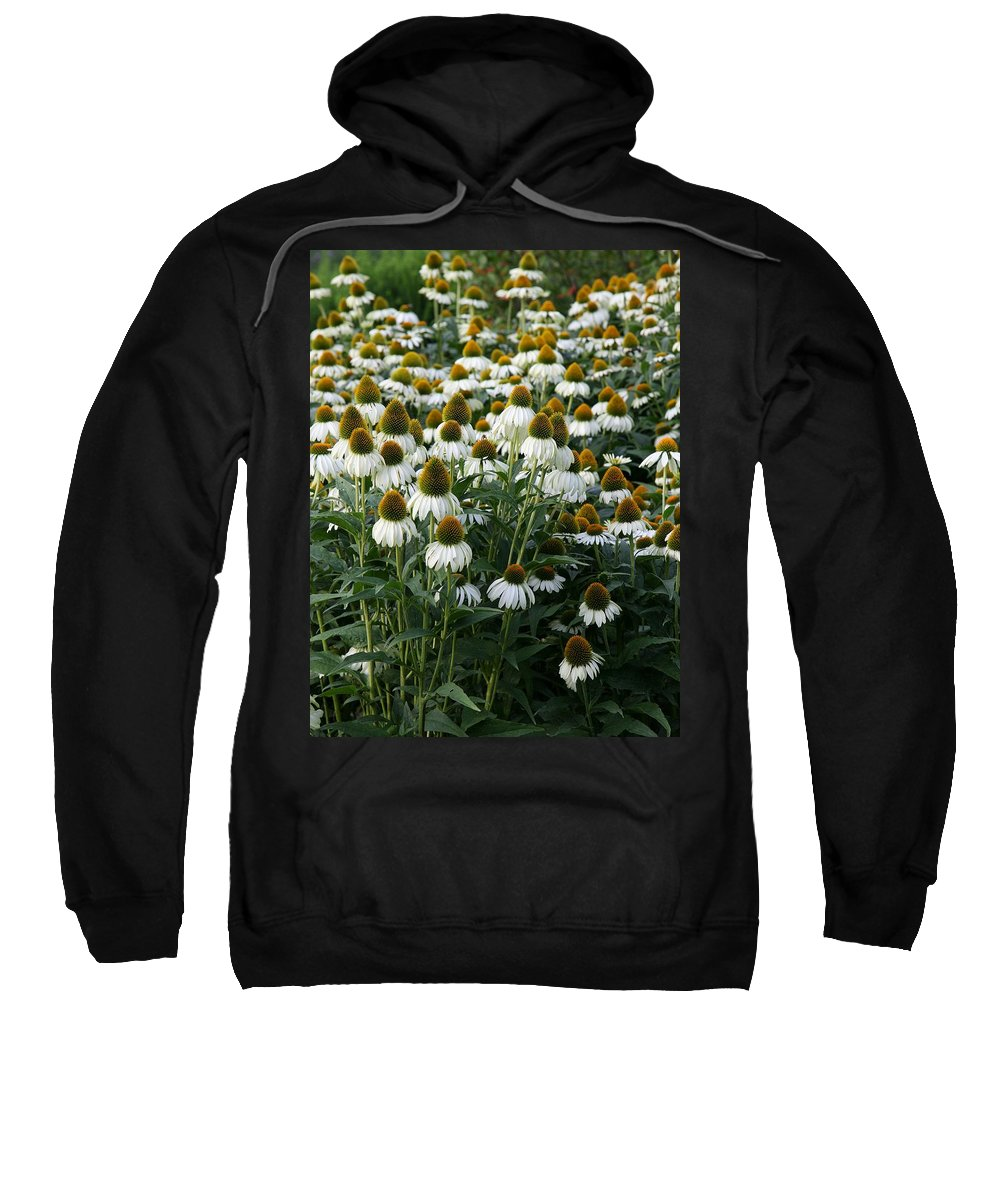 White Coneflower Sweatshirt featuring the photograph White Coneflower Field by Christiane Schulze Art And Photography