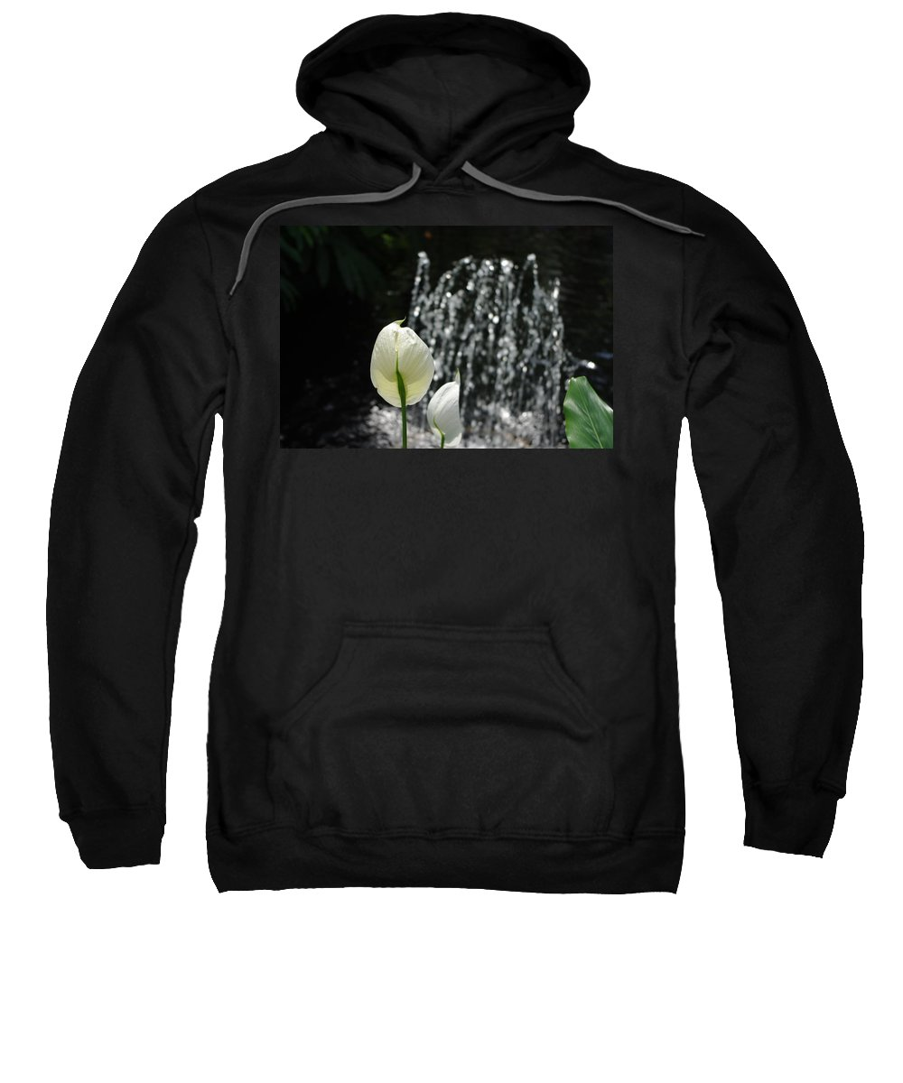Fountain Sweatshirt featuring the photograph White Flower At Fountain by Alice Markham
