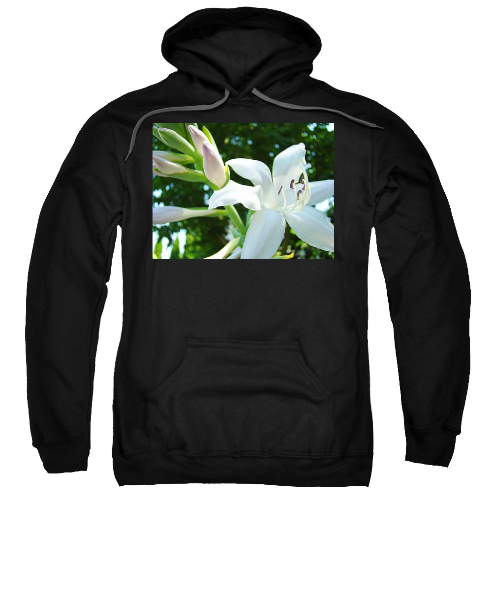Lilies Sweatshirt featuring the photograph White Lily Flowers Art Prints Lilies Giclee Baslee Troutman by Baslee Troutman