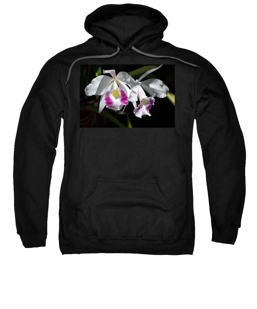 Photography Sweatshirt featuring the photograph White Orchids by Susanne Van Hulst