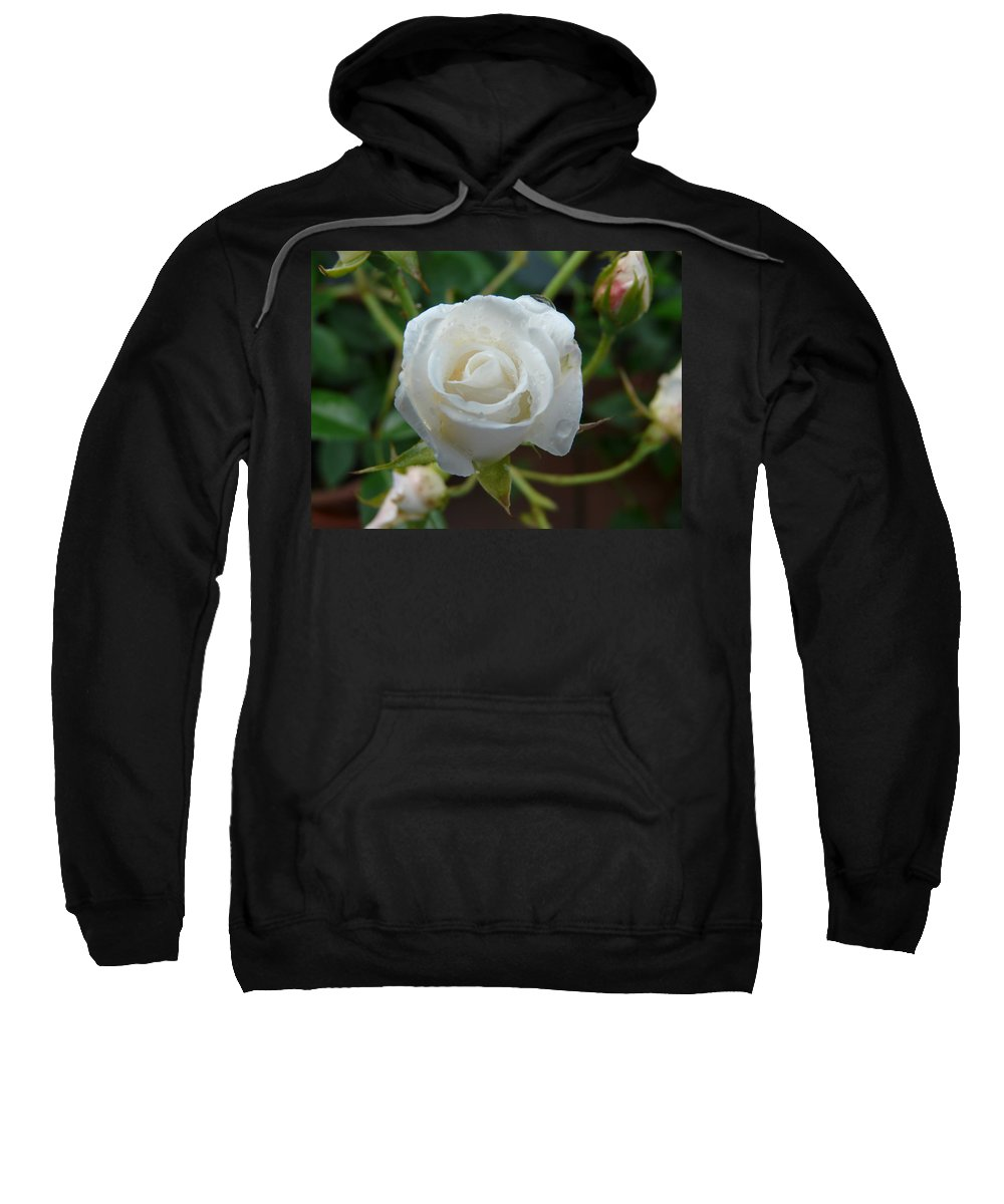 Rose Sweatshirt featuring the photograph White Rose After Rain 2 by Valerie Ornstein