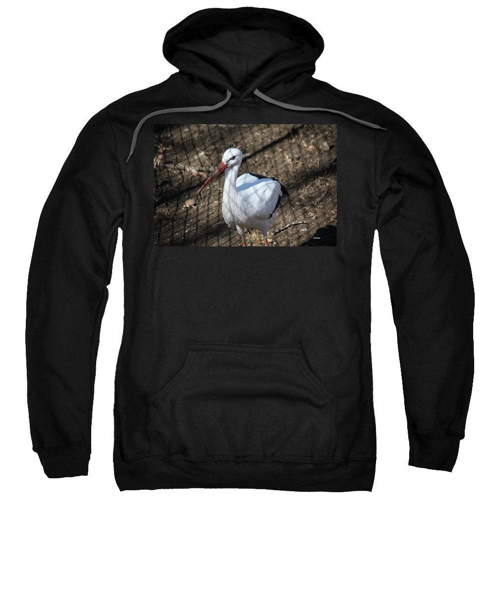 Maryland Sweatshirt featuring the photograph White Stork by Ronald Reid
