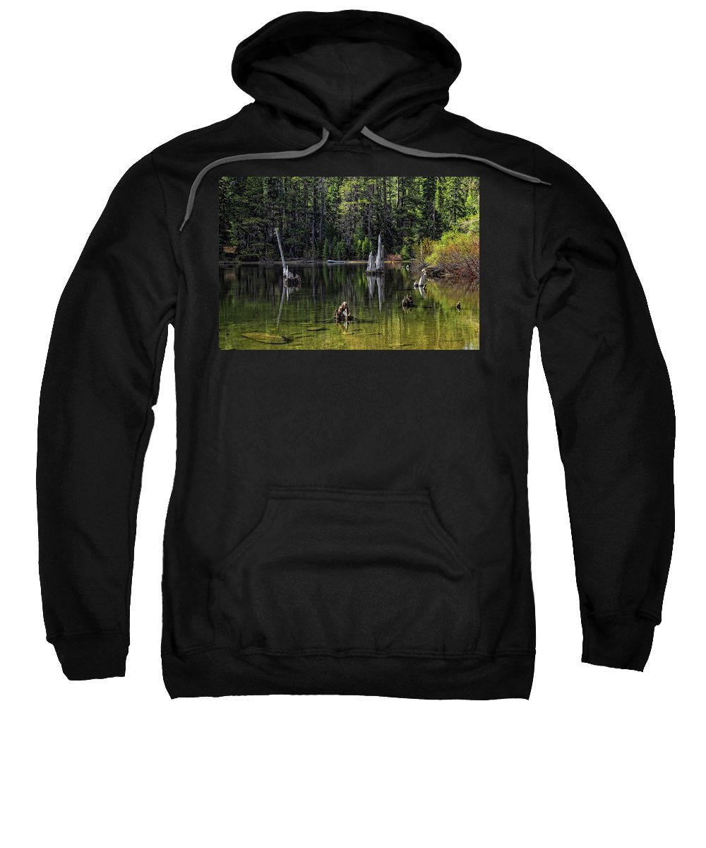 Tree Sweatshirt featuring the photograph White Trees Of Gondor by Donna Blackhall