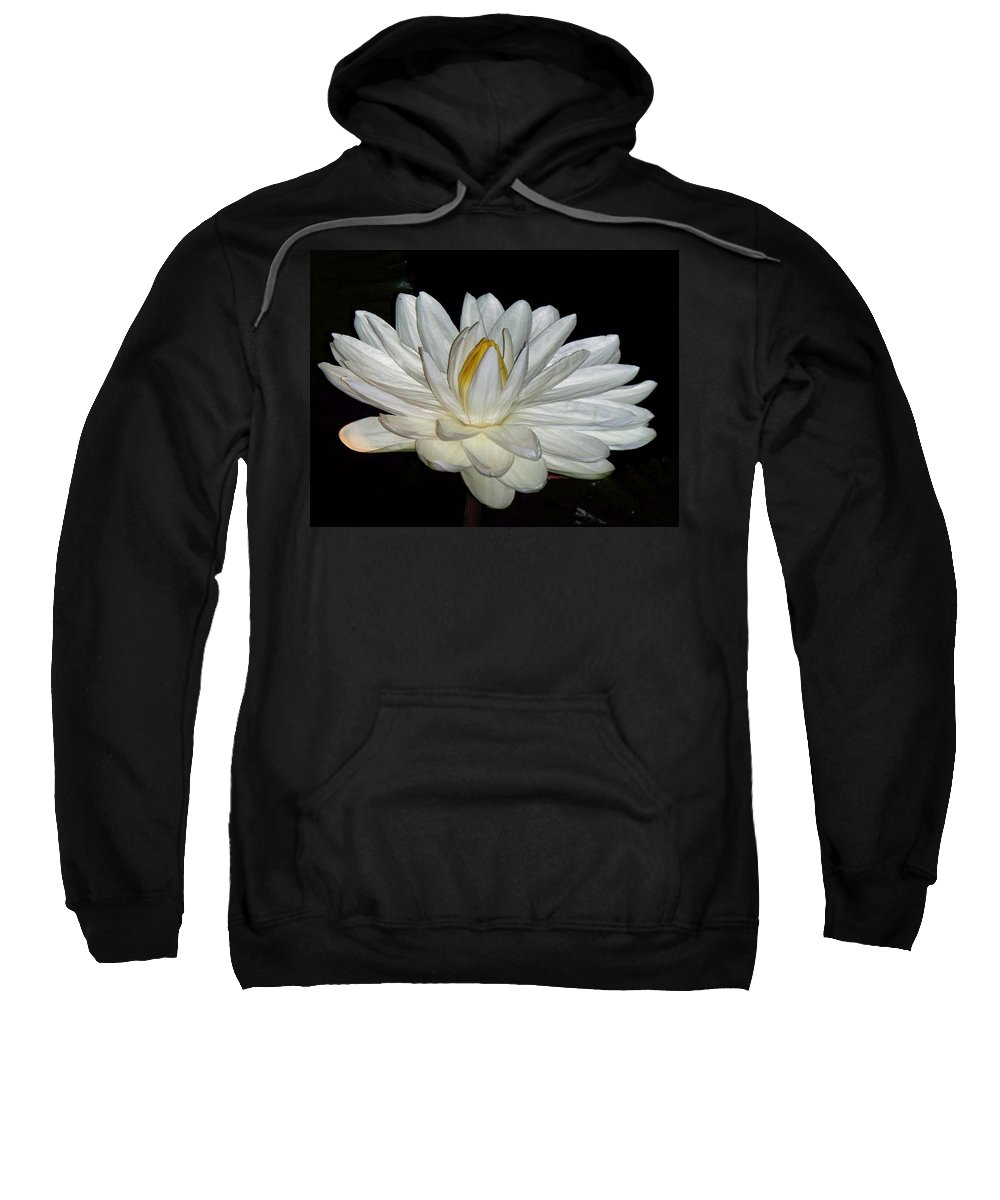 White Sweatshirt featuring the painting White Water Lily by Eric Schiabor