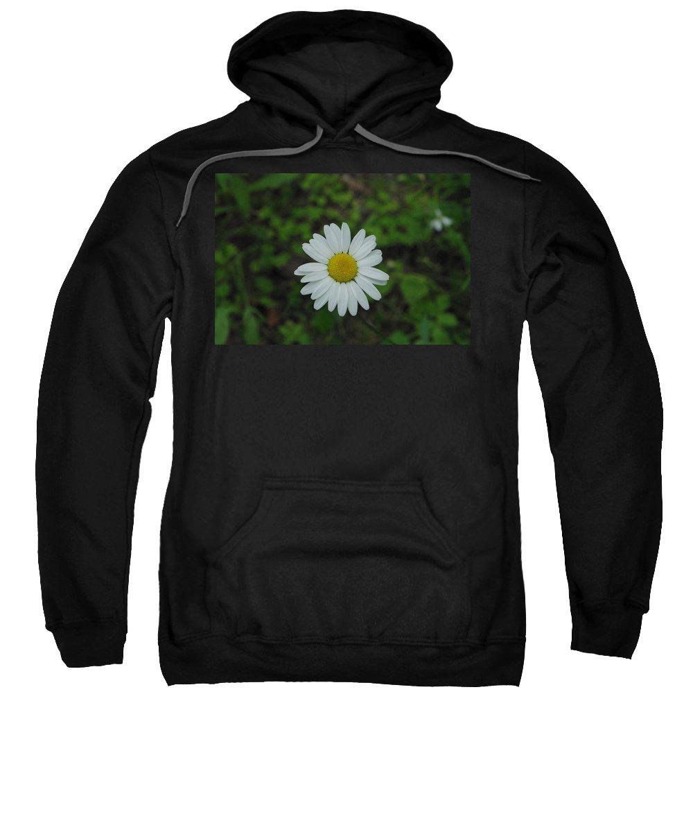 Flower Sweatshirt featuring the photograph White Wild Flower by Alice Markham