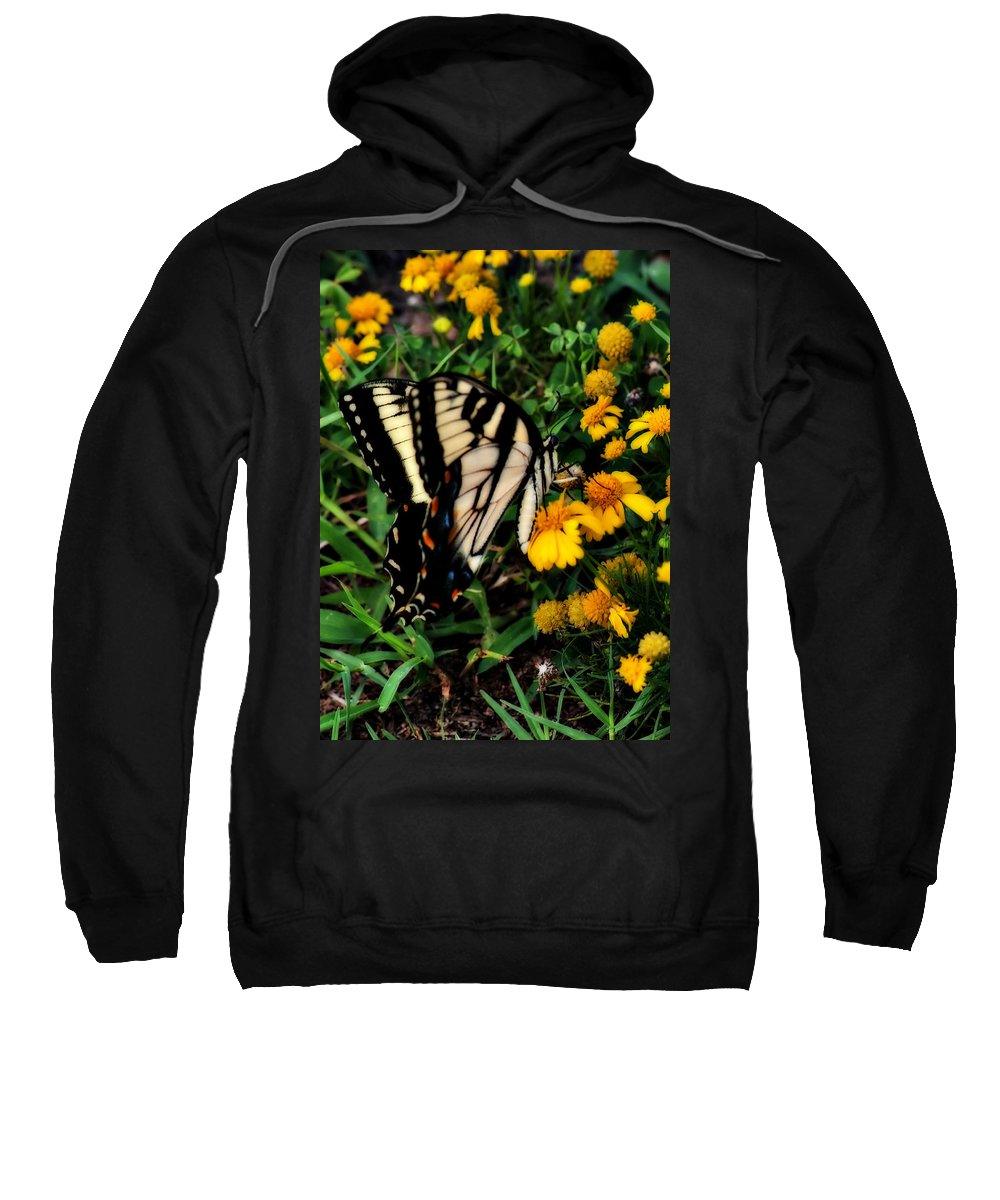 Butterfly Sweatshirt featuring the photograph White Wing Butterfly by Gary Adkins