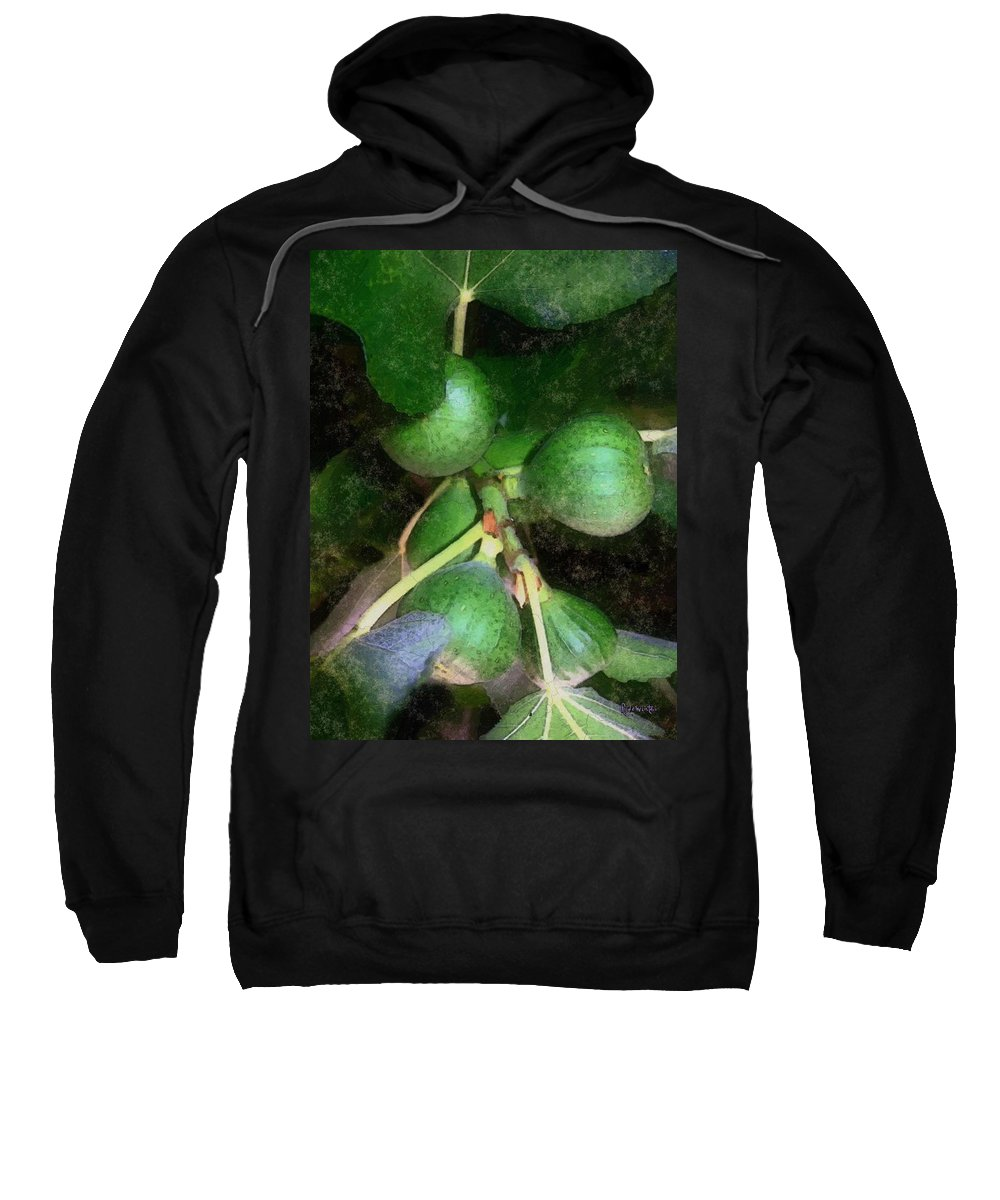 Fig Tree Sweatshirt featuring the digital art Who Gives A Fig by RC DeWinter
