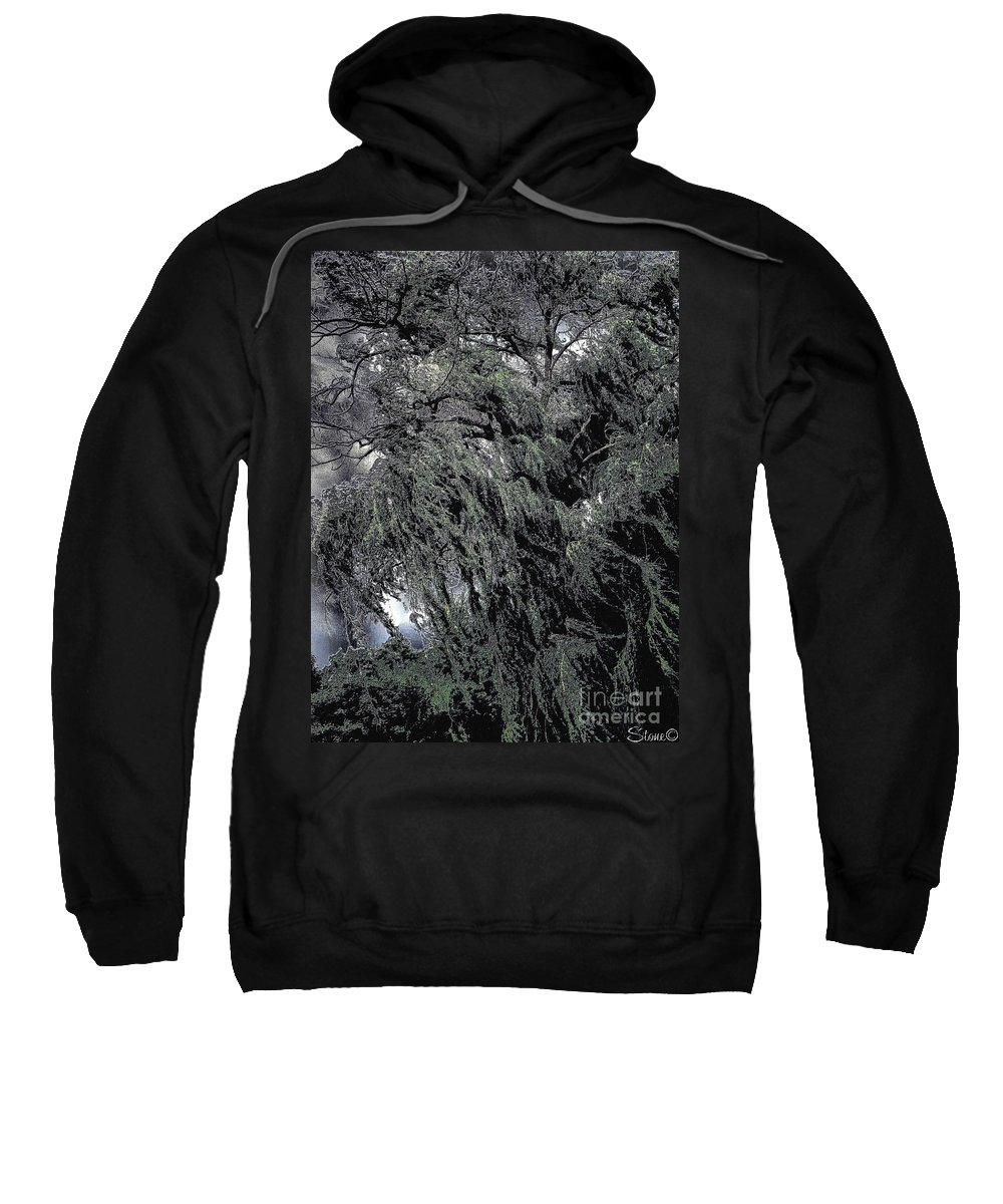 Willow Sweatshirt featuring the photograph Wicked by September Stone