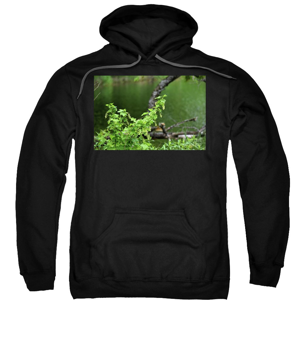 Wetlands Sweatshirt featuring the photograph Wild And Free by William Tasker