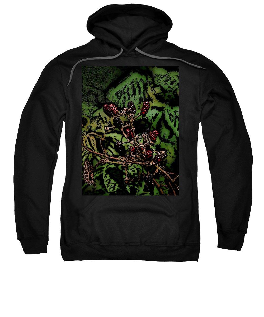 Digital Photography Sweatshirt featuring the photograph Wild Berries by David Lane