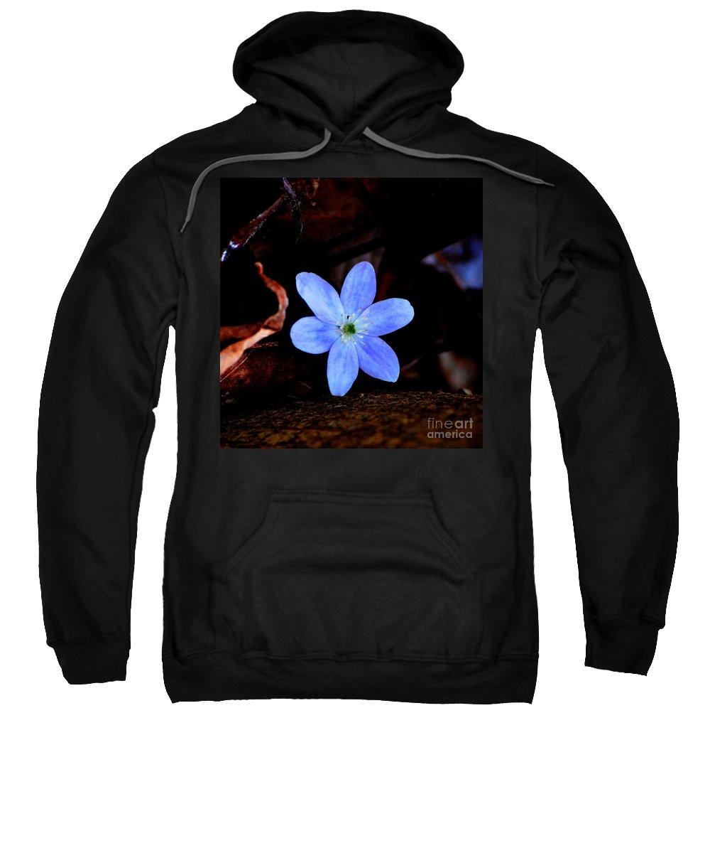 Digital Photo Sweatshirt featuring the photograph Wild Blue by David Lane