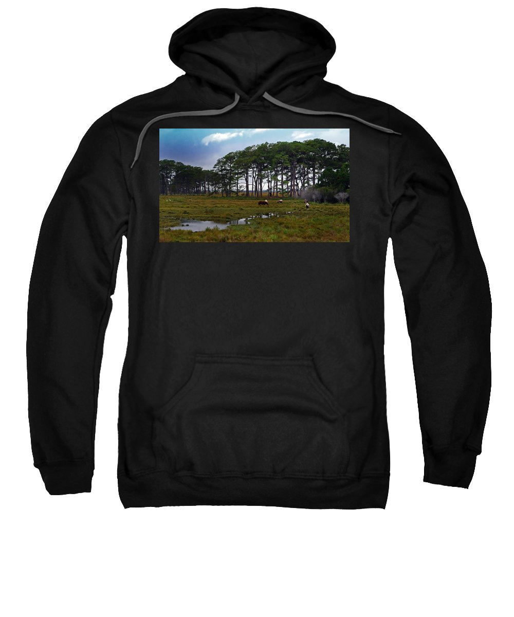 Pony Sweatshirt featuring the photograph Wild Ponies Of Assateague by Lori Tambakis