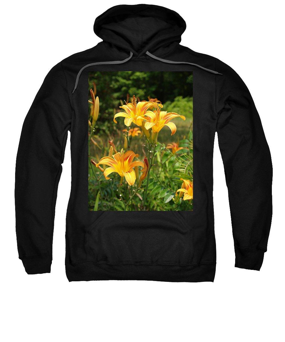Floral Sweatshirt featuring the photograph Wild Tiger Lilies by Brett Winn