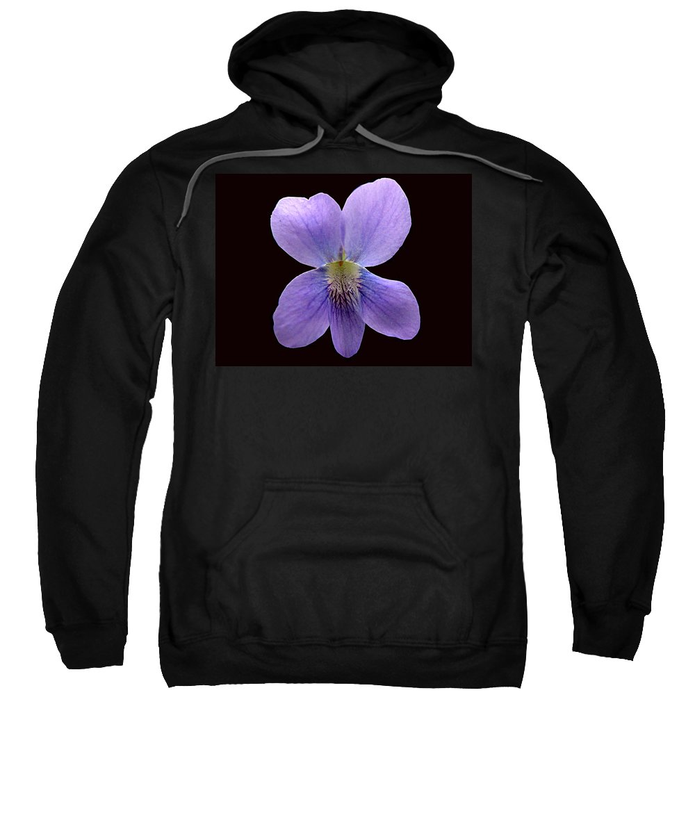 Violet Sweatshirt featuring the photograph Wild Violet On Black by J M Farris Photography