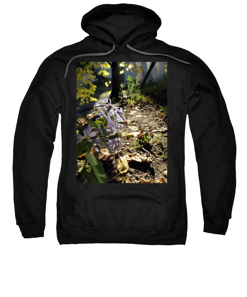 Nature Sweatshirt featuring the photograph Wildflower Looker by Trish Hale