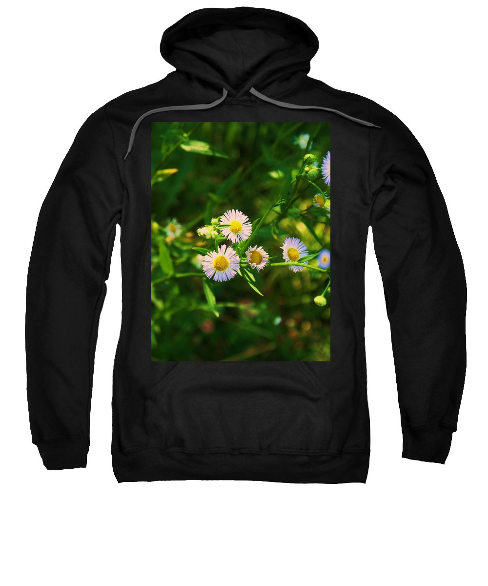 Wildflowers Sweatshirt featuring the painting Wildflowers by Eric Schiabor
