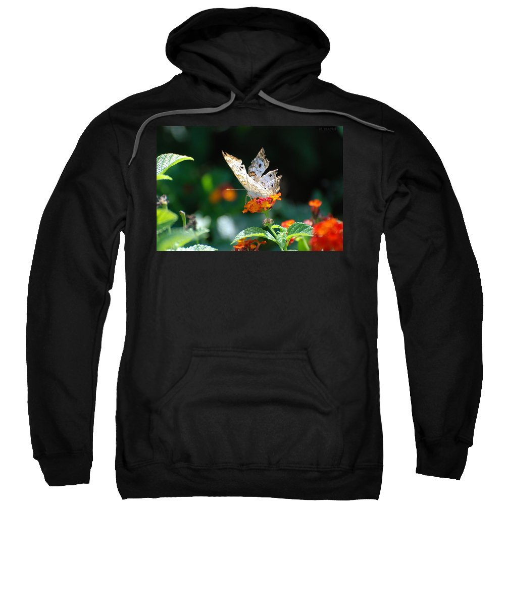 Butterfly Sweatshirt featuring the photograph Winged Butter by Rob Hans