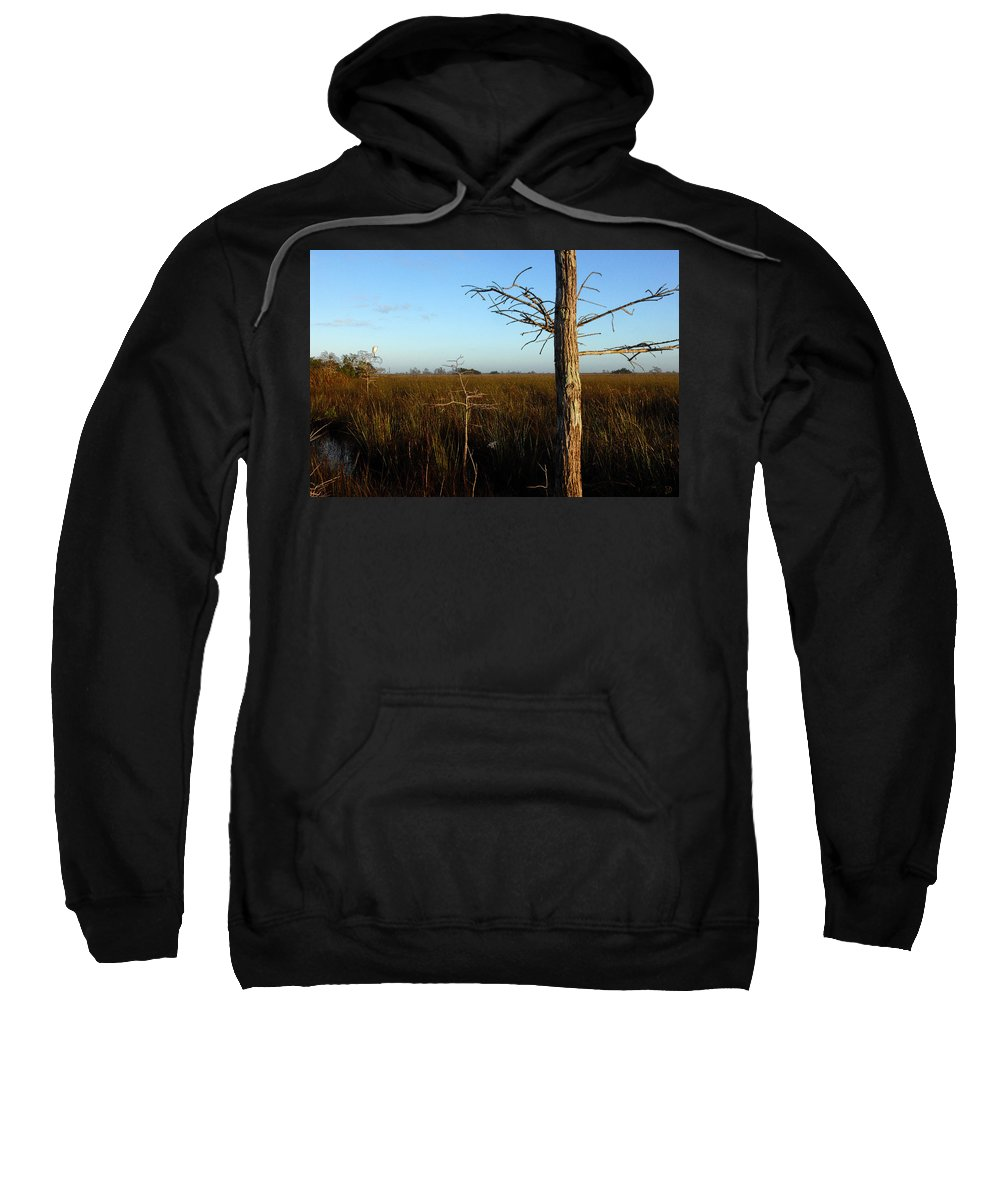 Cypress Trees Sweatshirt featuring the painting Winter Cypress by David Lee Thompson