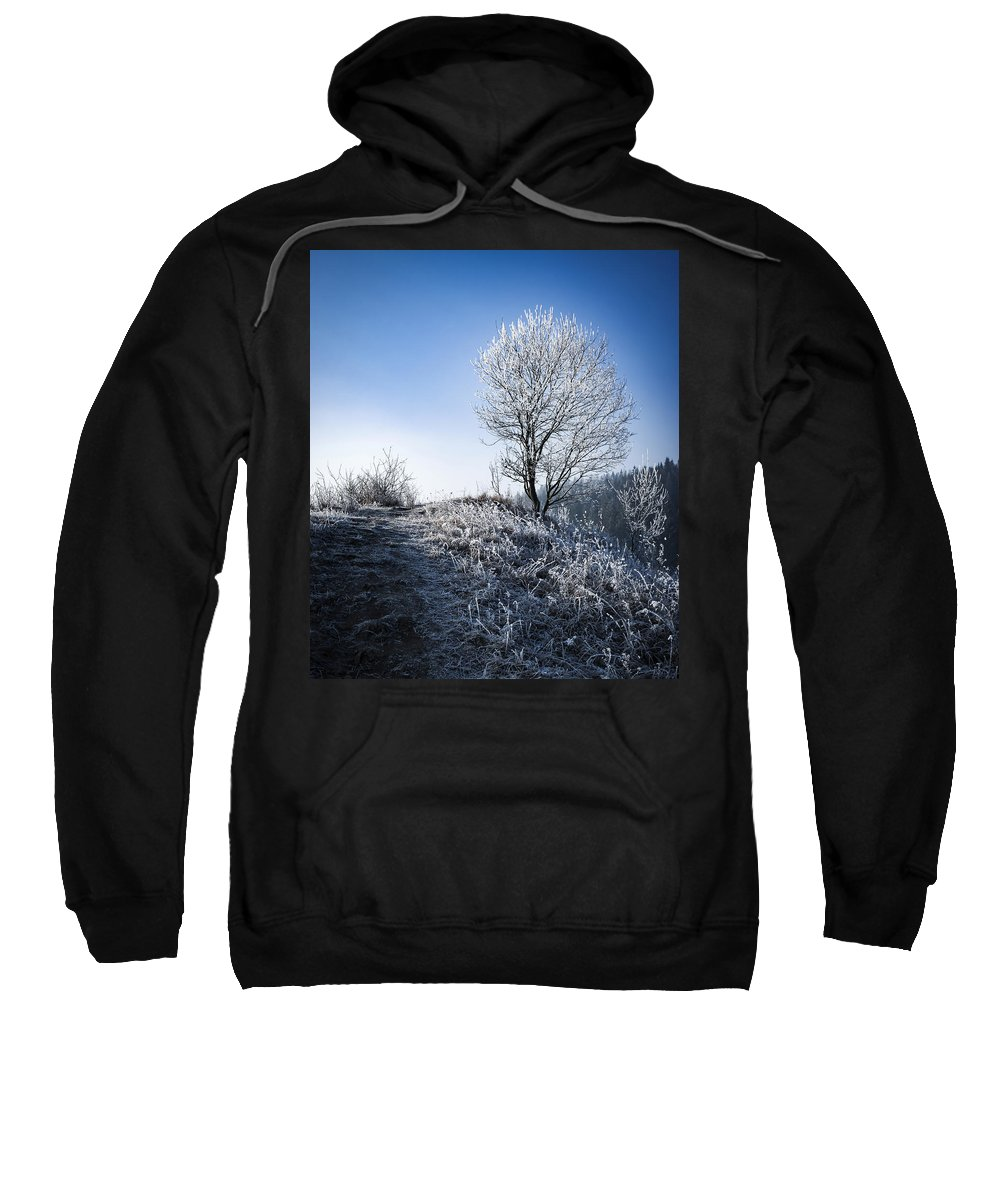 Snowflake Sweatshirt featuring the photograph Winter Landscape Of Trees Covered With Frost by Jozef Jankola