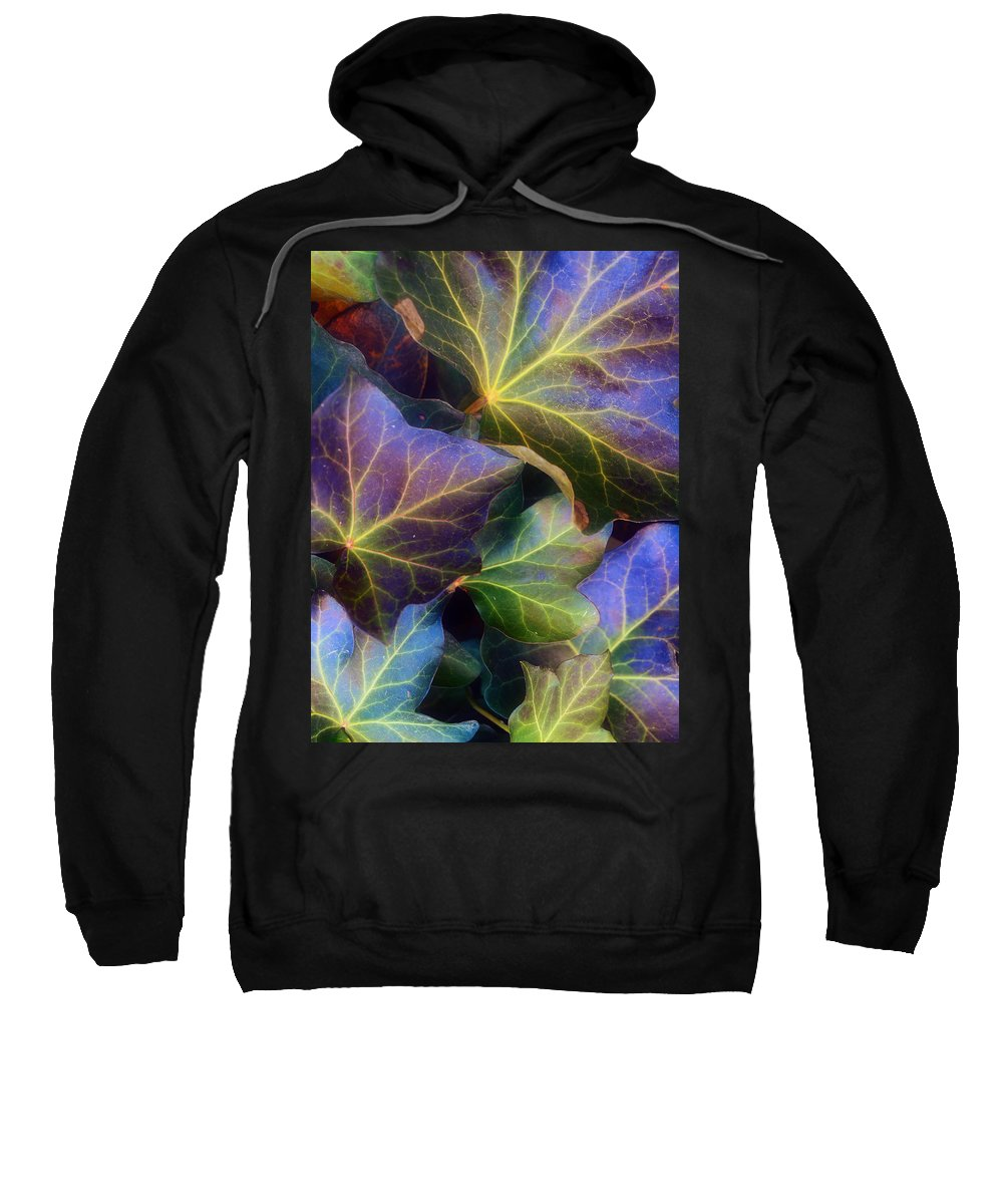 Leaves Sweatshirt featuring the photograph Winter Leaves by Tara Turner
