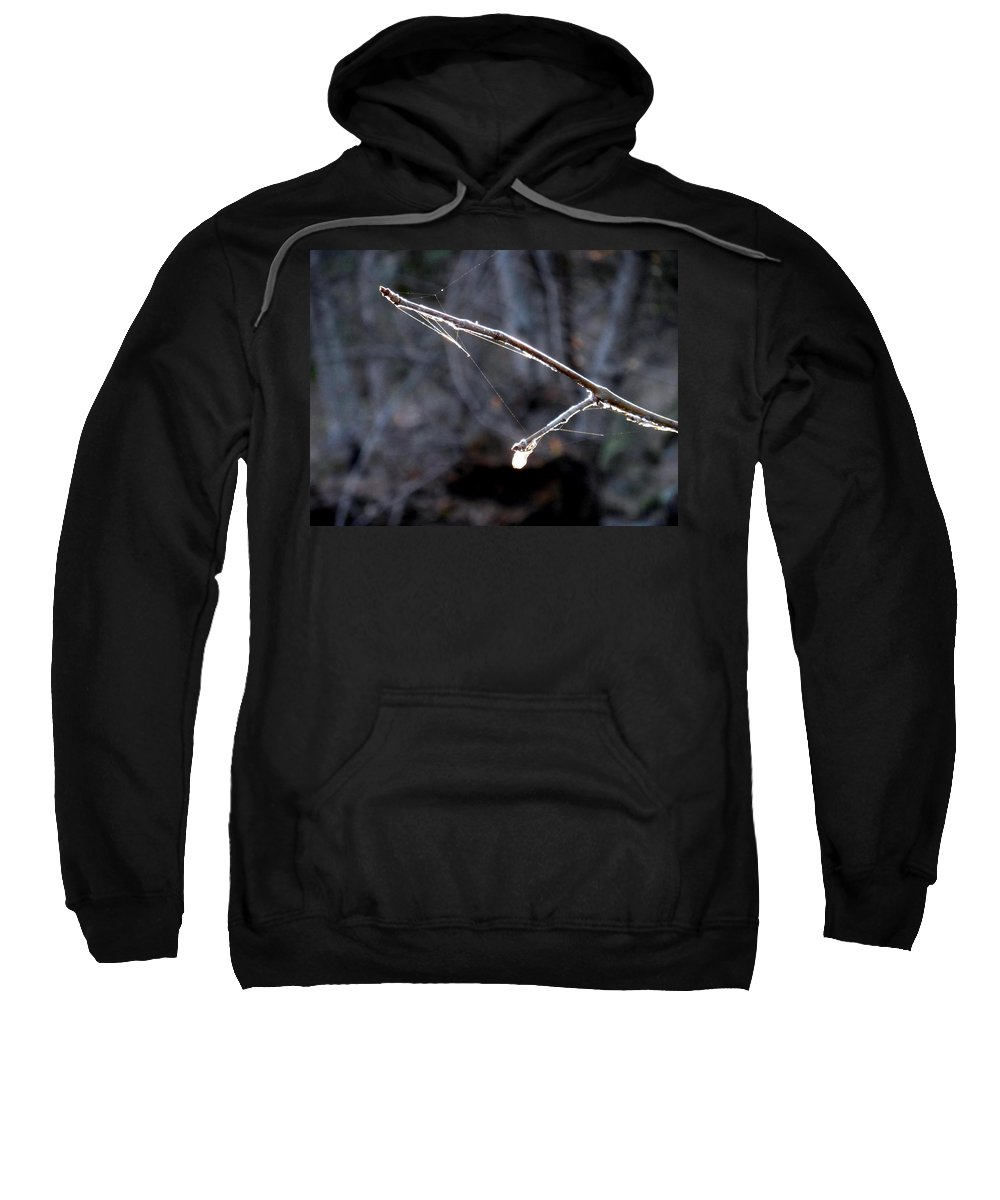 Winter Web Sweatshirt featuring the photograph Winter Web. by Chris Gudger